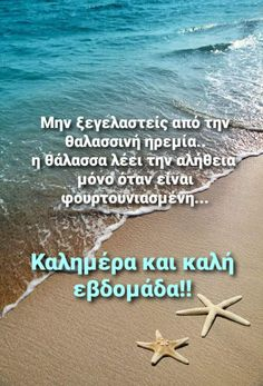 Good Morning Good Night, Wonders Of The World, Cool Photos, In This Moment, Beach, Quotes, Quotations, The Beach, Beaches