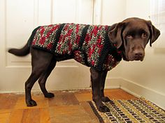 I based my pattern on my guide dog's winter coat. The full pattern writeup appears both on my personal website HERE and on an old shared crochet blog HERE.
