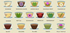 Health Benefits of Teas & Tisanes Infographic