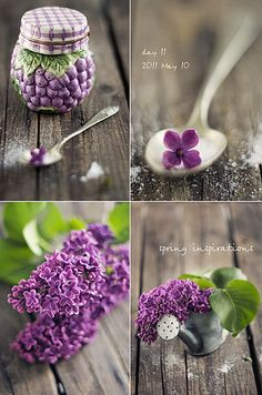 """prettylittleflower: """" day 11 (by luluto) """" Color Collage, Collage Photo, Sea Colour, Holly Leaf, All Things Purple, Purple Rain, Happy Saturday, Shades Of Purple, Purple Wedding"""