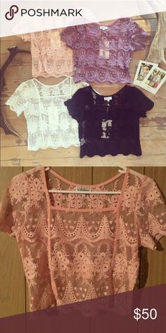 Lace crop top Blush color. NWT. Arnhem clothing Spell & The Gypsy Collective Tops Blouses