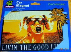 "DACHSHUND LIVIN' THE GOOD LIFE DOG CAR MAGNET 3"" X 6"""