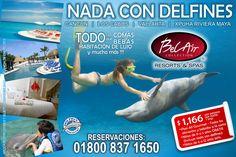 Vive la experiencia del nado con delfines a través de Bel Air Collection Resort & Spas!  Desde $1166  mxn por persona por noche + impuestos. http://www.coleccionbelair.com/landing_pages/dolphine/index.php