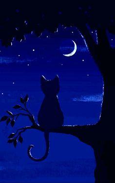 Cat Cards, Celestial, Awesome, Illustration, Outdoor, Ukulele, Icons, Stuff Stuff, Gatos