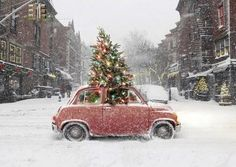 Casual Country Christmas - red car and tree = OK, I've got to motor too ... boxes wait to be moved & I NEED order & calm again! See ya! Beep Beep!