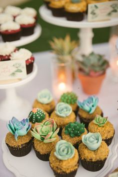 Garden Party Wedding In Palm Springs with a Tropical Twist Succulent and cacti cupcakes and cacti cupcakes Cactus Cupcakes, Taco Cupcakes, Tropical Cupcakes, Succulent Cupcakes, Baking Cupcakes, Cupcake Cakes, Taco Cake, Sweet 16 Decorations, Quince Decorations