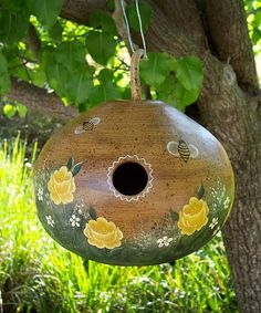birdhouse pictures | Steps to Making Gourd Birdhouses harvest, drying, painting Steps to ...