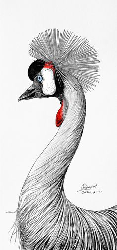 Rlon Wang is a designer and an illustration artist from Shenzhen China. Chalk Drawings, Bird Drawings, Animal Drawings, Pattern Illustration, Illustration Artists, Character Illustration, Comedy Tragedy Masks, Color Pencil Art, World Of Color