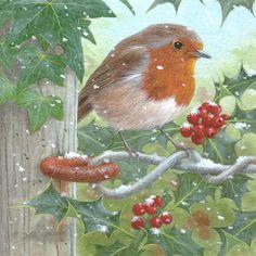 Old Christmas, Christmas Ideas, Christmas Cards, Robin Bird, Christmas Graphics, Art Birthday, All Birds, Winter Art, Beatrix Potter