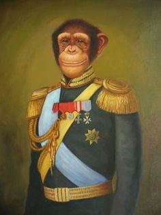 ADMIRAL Monkey to you!