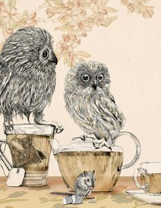 Tea and owls