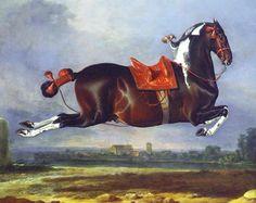 Paard  Johann Georg Hamilton