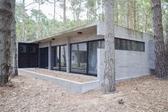 Single Story Homes, Pine Forest, Master Suite, House, Gallery, Ariel, Outdoor Decor, Woods, Architecture