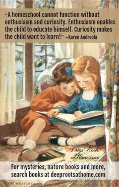 Homeschool cannot function without enthusiasm and curiosity. Enthusiasm enables the church to educate himself. Curiosity makes the child want to learn! Parenting Plan, Parenting Classes, Parenting Memes, Parenting Styles, Foster Parenting, Parenting Books, Love And Logic, Strong Willed Child, Adhd Kids