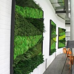 Moss Art is a popular product for Commercial, Retail, Hotel and Restaurant Location as interior decoration. Our Moss Art is bespoke to you and your environment. Request a Quote Moss Wall Art, Moss Art, Indoor Plants, Indoor Outdoor, Vertikal Garden, Artificial Plant Wall, Green Wall Art, Green Walls, Vertical Garden Wall