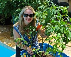 Learn how to select seeds, proper soil mixture, natural fertilizers, and natural pest control. -Garden-Nurse-Amy