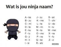 Mijn ninja naam: Tokatekika