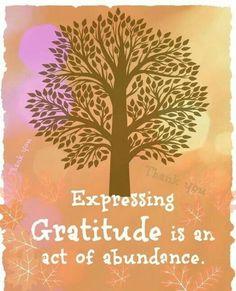 Gratitude every day...