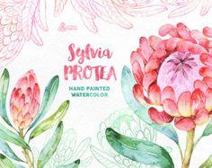 Rocío de la mañana. 33 elementos florales acuarela boda