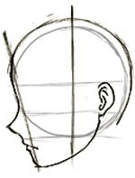 Guidelines for head turned
