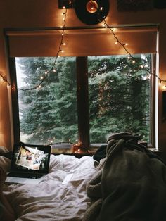 Craving for cosy spots