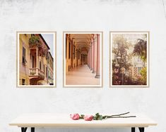Italy Architecture Photography, Set of 3 prints Italy wall art large wall art Italian Decor Artwork tropical leaf Download pastel chic art