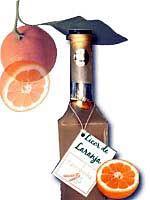 Como fazer Licor de Cointreau de Laranja : Receitas de Licores Caseiros