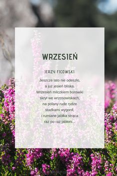 Wiersz jesienny. Jesień. Wiersze dla dzieci. Kids Learning, Education, Literatura, Educational Illustrations, Learning, Baby Learning, Studying