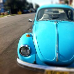 I had one of these little 'bugs' but not in this perfect colour tho.
