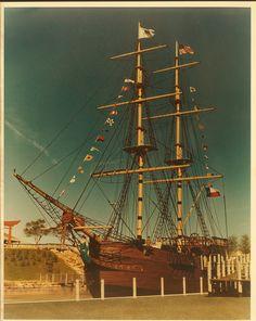 Seven Seas . Arlington . Texas . UTA Library Collection . c31286f89e6d405f95d077a19e1dddc2.jpg (1051×1320)