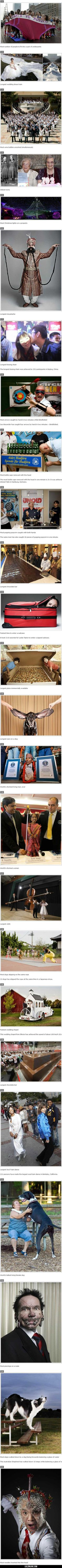 Some awesome 2012 Guiness World Records#funny #lol #lolzonline
