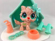 Littlest Pet Shop ULTRA RARE Lt Tan Timber Wolf #2778 w/Tent & Accessories #Hasbro