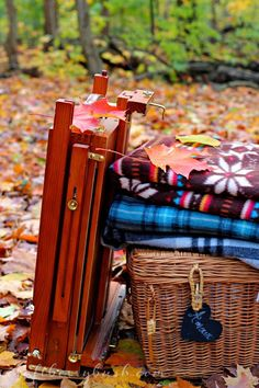Craftberry Bush: An Autumn Picnic with our New Canon SL1