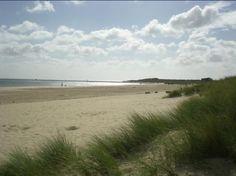 Shell Bay, Dorset, England, 2011.