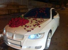 BMW artistic car | art cars | BMW | BMW art cars | white BMW | BMW photos | crazy cars