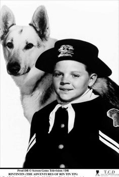"""Birthday greetings to actor LEE AAKER; he's 73 years old today. He is best known for his appearance as Rusty """"B-Company"""" in the television program The Adventures of Rin Tin Tin. He also appeared in other film styles such as the film noir thriller Jeopardy (1953) with Barbara Stanwyck, the hoss opera drama Arena (1953) with Gig Young and the comedies Mister Scoutmaster (1953) with Clifton Webb and Ricochet Romance (1954) with Marjorie Main."""