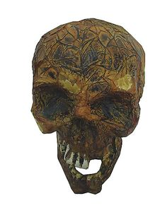 Rotted Skull - Decorations  - Spirithalloween.com