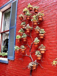 """shared via nutiva.com - Adorable vertical """"tree"""" garden! #green #inspiration"""