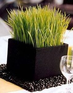 Simple, inexpensive, beautiful wheat grass center pieces