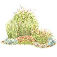 corner of grasses....I like this