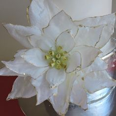 """#floresdeazucar #floresdepapeloblea #waferpaper #weddingcake #monterrey #maricu #momentosroccatti #pasteleria #pastelesboda"""