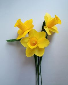 How to make paper daffodil flower out of printer paper free how to make paper daffodil flower out of printer paper free template paper flowers pinterest printer paper daffodil flowers and daffodils mightylinksfo