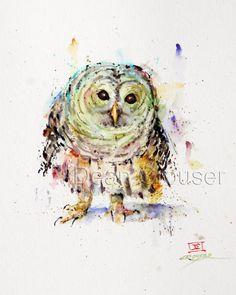 PYGMY OWL Watercolor Print by Dean Crouser by DeanCrouserArt