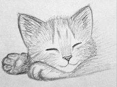 Easy pencil drawings of animals kitten sketch 3 by on kitten drawing easy easy pencil drawing . easy pencil drawings of animals Cute Sketches, Drawing Sketches, Drawing Ideas, Drawing Drawing, Animal Sketches Easy, Sketching, Simple Animal Drawings, Fire Drawing, Drawing Tips