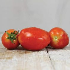 Amish Paste Tomatoes at Baker's Creek Seeds