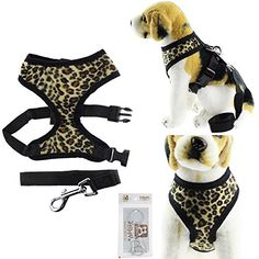 Bolbove Adjustable Plush Leopard Print Harness and Leash Set for Cats  Dogs Leopard Print XSmall -- Read more reviews of the product by visiting the link on the image.Note:It is affiliate link to Amazon.