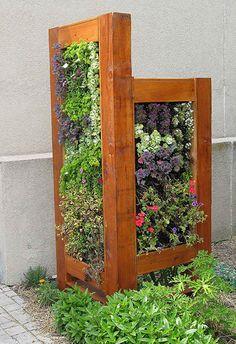 Divisória tipo jardim vertical, com estrutura de madeira em torras e plantas trepadeiras coloridas.