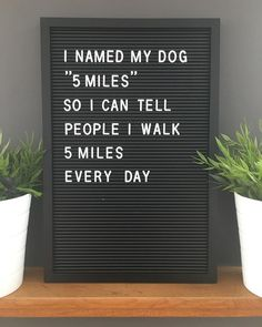 Funny Quotes Bring Out Little Smiles – Viral Gossip Word Board, Quote Board, Message Board, Dog Quotes Funny, Me Quotes, Bored Quotes, Walking Quotes, Felt Letter Board, Felt Boards