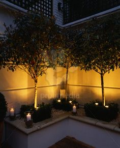 Modern roof garden with white raised beds, glass candle holders, clipped box, white gravel and Stand