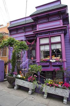 San Fancisco Architecture : San Francisco Walking Tour: The Castro Exterior House Colors, Exterior Paint, Exterior Design, Purple Home, Woman Painting, House Painting, Purple Painted Lady, Painted Ladies, Facades
